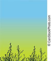 floral, vector, grunge, achtergrond