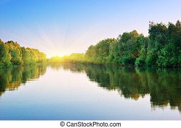 forest., lente, rivier