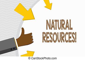 foto, vorm, economisch, duimen, arrows., geschieden, schrijvende , vasthouden, tekst, conceptueel, resources., gebruikt, zakelijk, natuur, het tonen, hand, winst, natuurlijke , op, ronde, materialen, gesturing