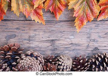 frame, herfst