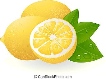 fris, bladeren, citroenen