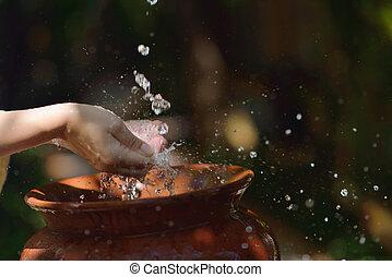 fris, vrouw, het bespaten, handen, water