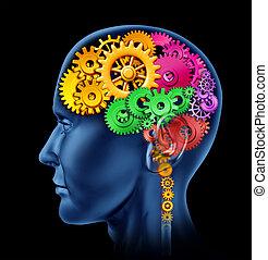 functie, hersenen