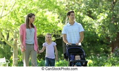 gaan, vrolijke , wandeling, gezin, park