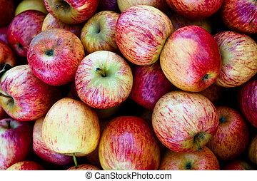 gala, appeltjes