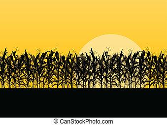 gedetailleerd, platteland, koren, illustratie, akker, vector, achtergrond, landscape