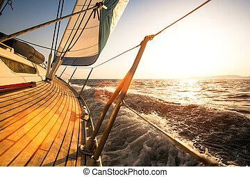 gedurende, regatta, zeilend, sunset.