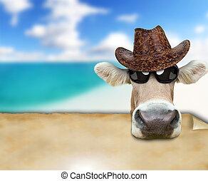 gekke , koe