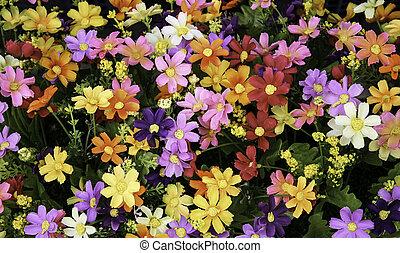 gemengd, bouquetten, bloemen, achtergrond