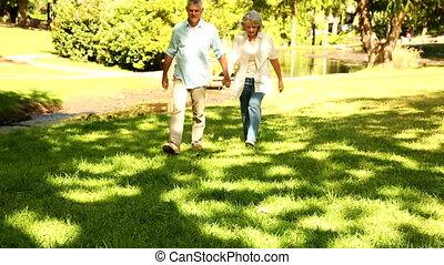 gepensioneerd, wandelende, park, paar