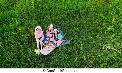 gezin, gras, picknick, groene