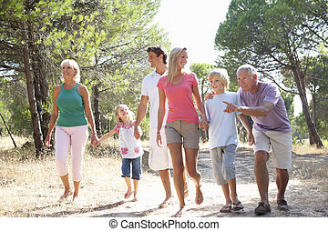 gezin, park, grootouders, wandeling, door, ouders, kinderen