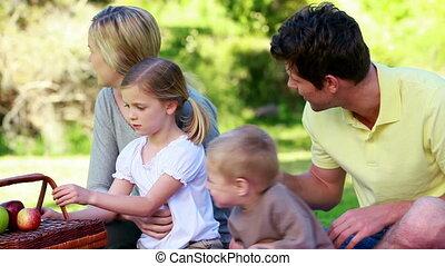 gezin, picnicking