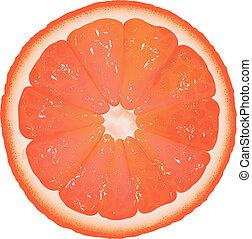 grapefruit, segment