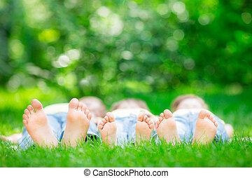 gras familie, het liggen