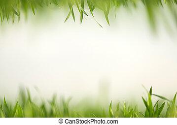 gras, groene, samenstelling, artistiek