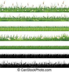 gras, groene, verzameling