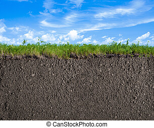 gras, hemel, achtergrond, terrein, natuur