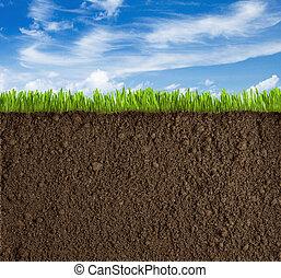 gras, hemel, terrein, achtergrond