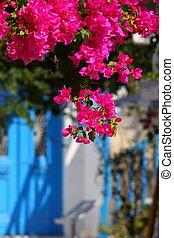 (greece, traditionele , cyclades), architectuur, mykonos., cycladic