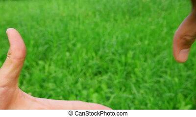 grens, gras, groene achtergrond, handen