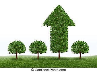 groei, financieel succes
