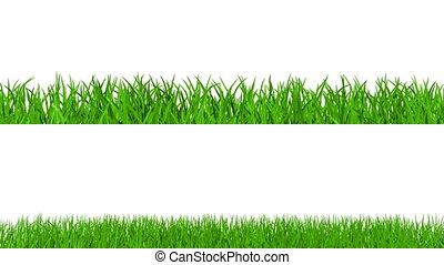 groeiende, alfa, gras, vaart