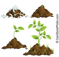 groeiende, planten