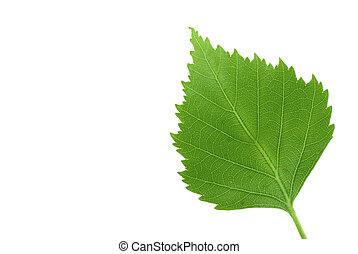 groen blad, puur, w