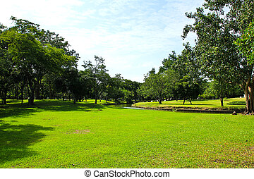 groen park, bomen