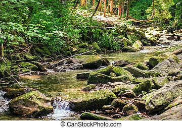 groene, mos, stroom, rotsen