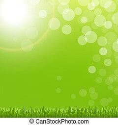 groene samenvatting, gras, bel, zon