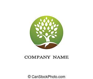 groene, symbool, blad, illustratie