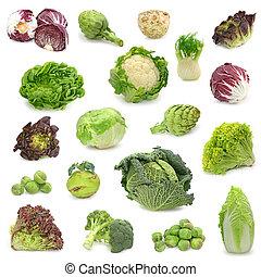 groente, collecteren, kool, groene