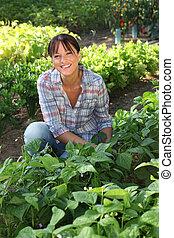 groente, vrouw, lappen