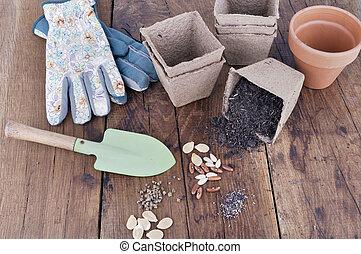 groente, zaden, plank, seedlings