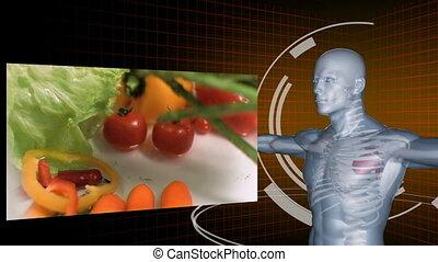 groentes, vertragen, video's, motie