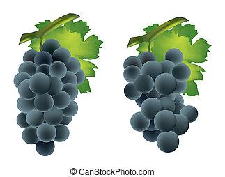 groep, blad, groene druif, fris