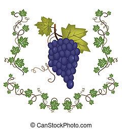 groep, druif, groene, vellen