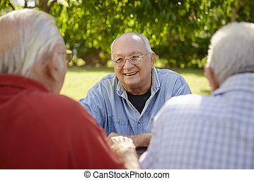 groep, mannen, park, lachen, plezier, senior, hebben