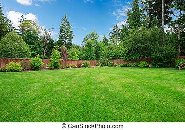 groot, bomen., geschermde, groene, achterplaats
