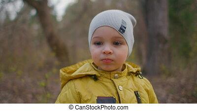 groot, hoed jongen, gele, bos, brooding, camera., jas, jaren, 2, schattig, eyelashes., het charmeren, blik