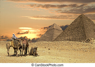 groot, mensen, ath, piramides