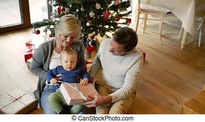 grootouders, boompje, kerstmis, kleinzoon, home.
