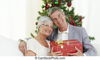 grootouders, vrolijke , vasthouden, christma