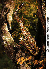grungy, oud, saxofone