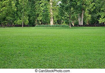 handeel gras af, bomen
