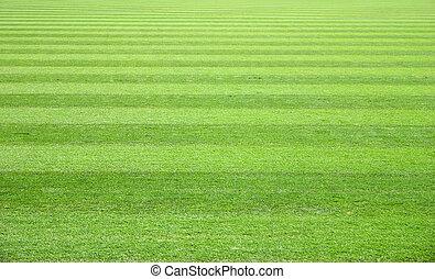 handeel gras af