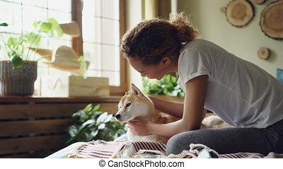 hardloop, jonge, slaapkamer, dieren, beminnelijk, gemengd, vensters, zittende , mensen, groot, shiba, interior., bed, moderne, dame, concept., mooi, tikken op, inu, dog