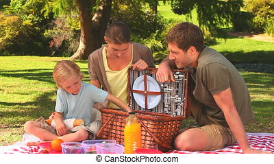 hebben, familie picknick